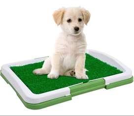 Tapete Entrenamiento Perro Cachorro Baño Puppy Potty Pad Tv