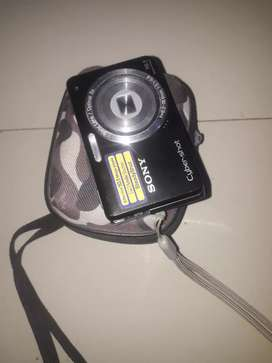 Camara Sony de w180