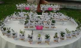 Recuerdos Suculentas cactus Matrimonio bautizo Comunion BabyShower