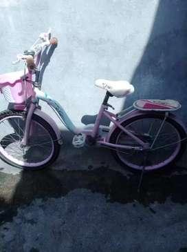 Bicicleta  de