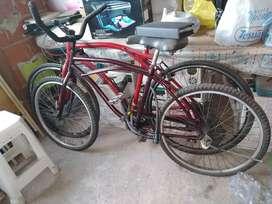 Bicicleta playera rod26