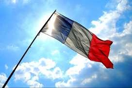 El francés intensivo con tutor NATIVO - solo 220mil/mes !