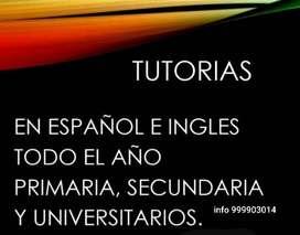 Tutorias para trabajos universitarios en Inglés