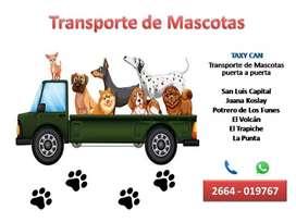 Transporte de mascotas