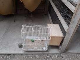 Vendo jaula usada para aves