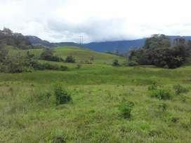 *Se Vende  Finca en Macanal Boyacá, Área: 8 Hectáreas,  a 15 Kilómetros del perímetro Urbano*