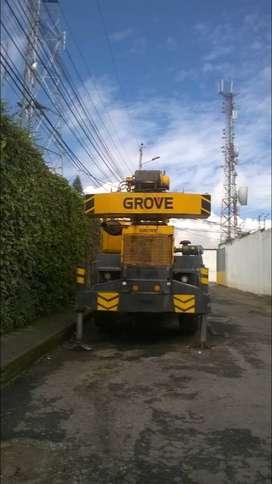Grua Grove 30 ton
