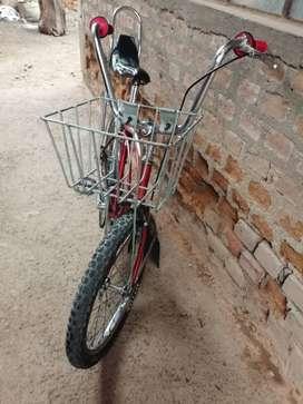 Vendo una bicicleta  arenera