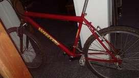 Remato bici WINTER rod. 26