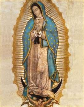 Lienzografia  Virgen de la Guadalupe