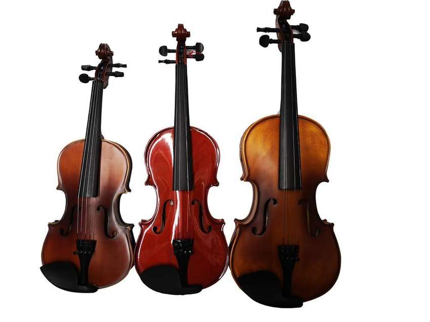 violín de estudio económico