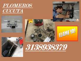 PLOMEROS CUCUTA