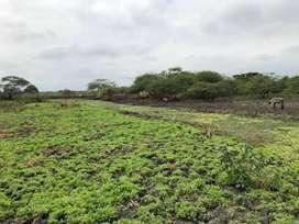 Finca de venta de 22 hect en Duran- Tambo