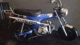 Dax Mondial 2011