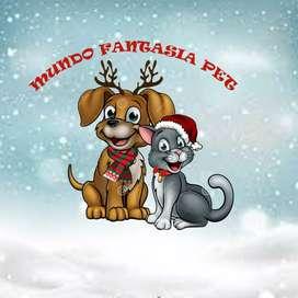 mundo fantasía PET te la bienvenida a esta gran familia amantes a los caninos y muy pronto a los felinos