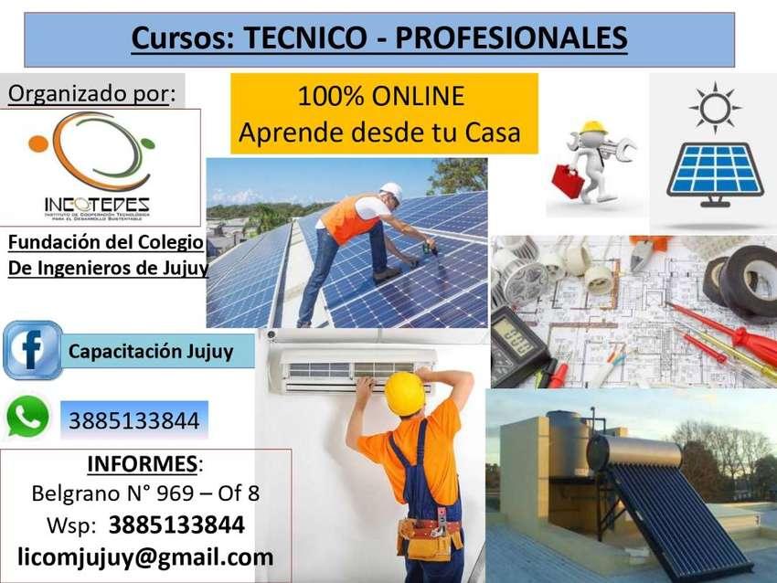CURSOS TECNICOS / PROFESIONALES