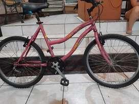 Bicicleta rin 24
