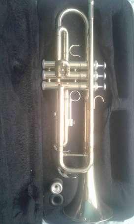 Trompeta 9/10 un año de uso