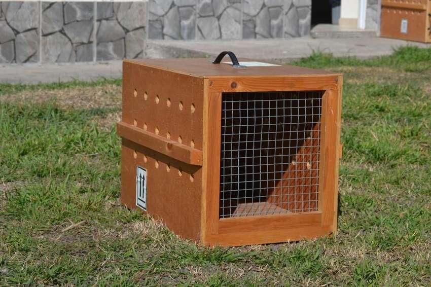 Jaula transportadora canina de madera 0