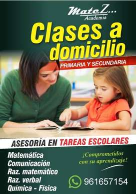 clases personalizadas  a domicilio- niveles: primaria y secundaria