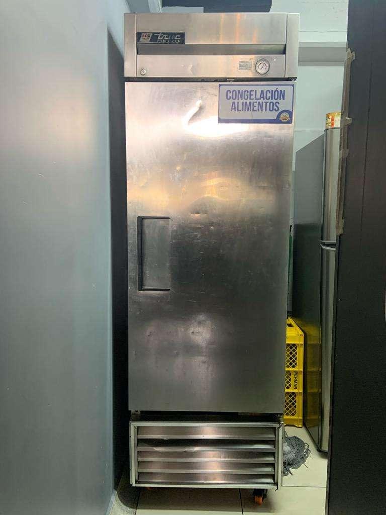True Freezer -Congelador Vertical 0