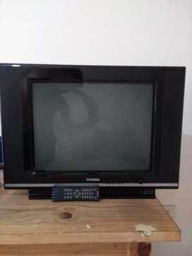 Televisor 21'' TELEFUNKEN Pantalla plana