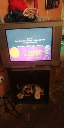 Televisor Sony 21 pulgadas con control
