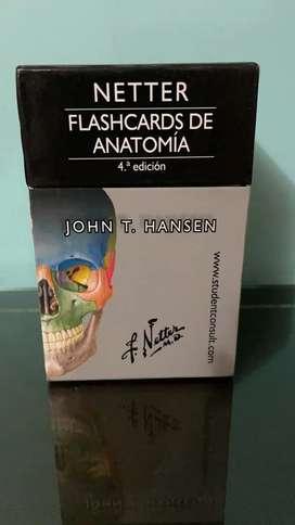 Flashcards de Anatomía Netter