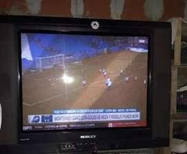 TV NOBLEX DE 29 PULGADA
