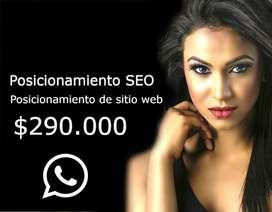 Posicionamiento de sitio web, agencia SEO posicionamiento orgánico Bogotá Colombia