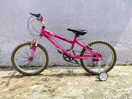 Bicicleta rosa (para niñas de 8-12 años)