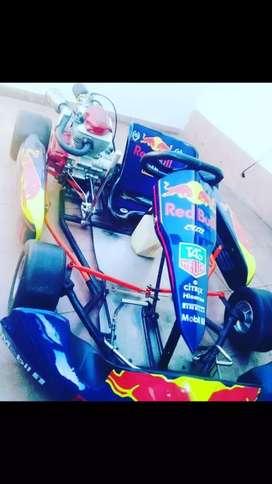 Karting 150cc motor nuevo pontones batería nueva dos juegos de gomas