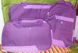 Set de bolsos y maleta