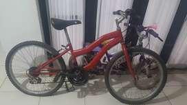 Vendo bicicleta unisex