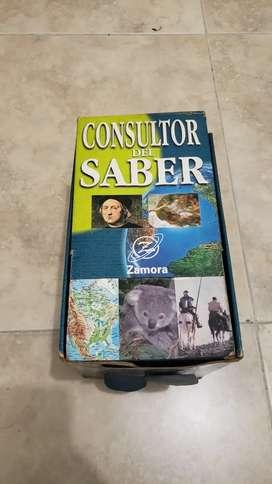 CONSULTOR DEL SABER