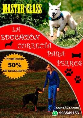 PROGRAMA PROFESIONAL SOBRE LA CORRECTA EDUCACION DE LOS PERROS