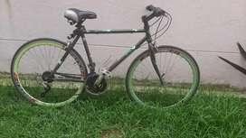 Venta bici verde marca FITXER