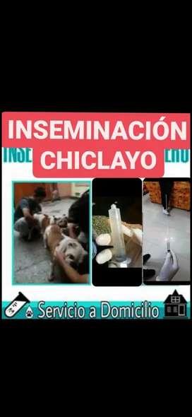 SERVICIO DE ENSEMINACIONES