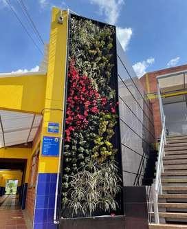 Jardines verticales naturales y artificiales