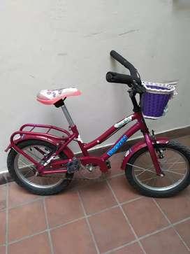 Bicicleta Niña 4 a 6 años