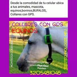 Localizadores GPS.desde la comodidad de tu celular.