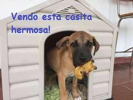 Vendo casita para perro