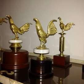 Trofeos gallos copas, placas todo en bronce.