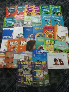 Lote de libros escolares