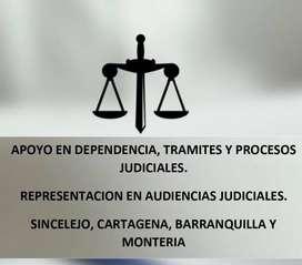 DEPENDENCIA JUDICIAL Y REPRESENTACION DE AUDIENCIAS