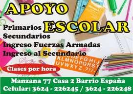 Apoyo Escolar y Preparación de Materias