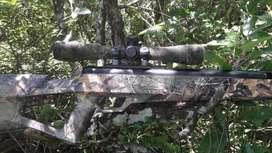 Rifle Crosman Benjamín Trail Np2