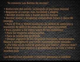 Clase de Barras de Access Certificacion Internacional On Line
