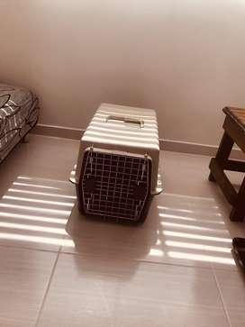Guacal de segunda para perro o gato