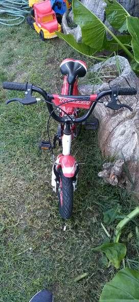 Excelente bicicleta RALEIGH ideal para niños